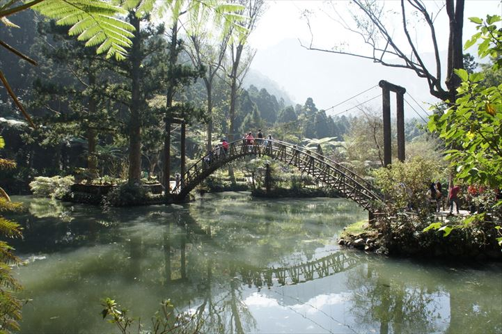 台湾・台中発1日モデルルート】台湾に眠る大自然を感じる溪頭・日月潭の旅