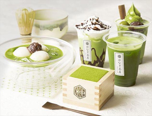 升入り宇治抹茶ティラミスなど抹茶づくしの甘味カフェが浅草にオープン