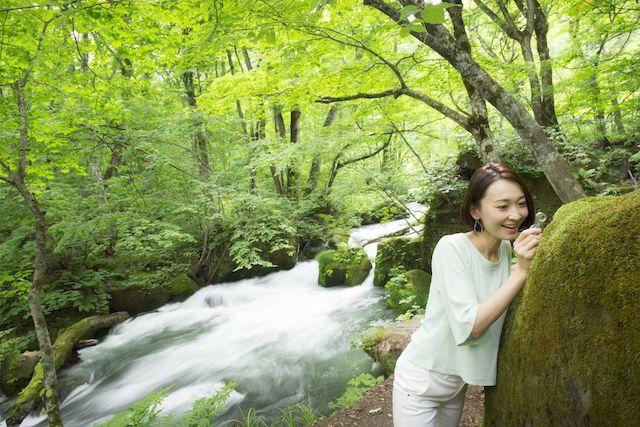 苔と暮らす1泊2日。奥入瀬渓流の苔を愛で、癒される旅