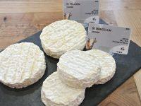 【フランス】お土産に喜ばれるチーズを在住者が勝手にランキング