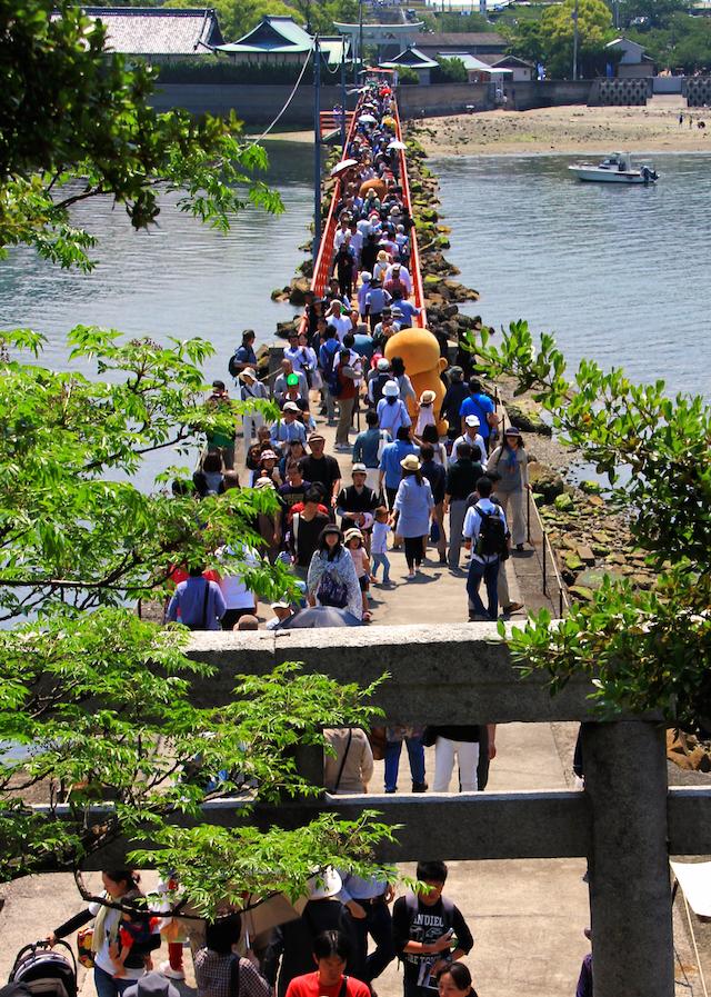 真夏の2日間だけ渡れる「しあわせ橋」 香川県三豊市