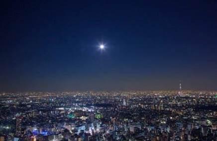 今週どこ行く?東京都内近郊おすすめイベント【7月26日〜8月1日】無料あり
