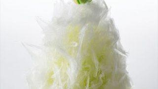 日光の天然氷で作る、ふわふわでくちどけなめらかな「サツキ江戸かき氷」