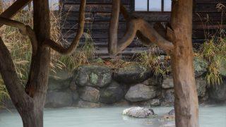 乳頭温泉は何位?プロの旅ライター22人が選ぶ観光地TOP5【秋田編】