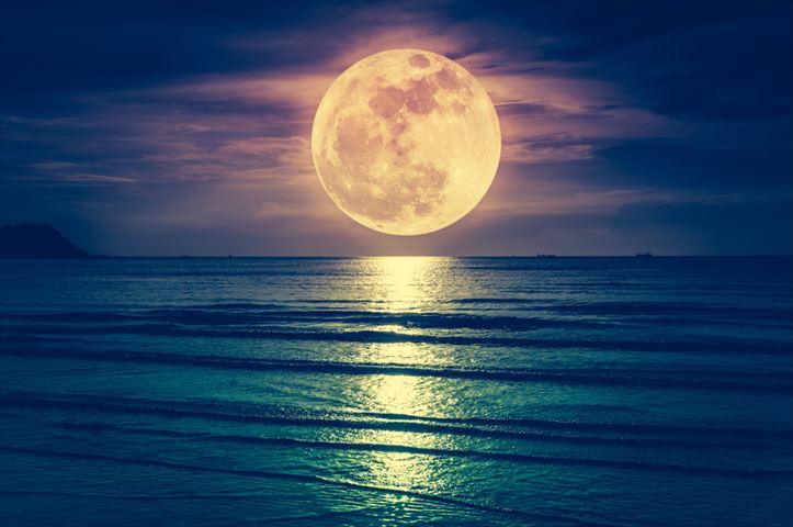 【9月24日の十五夜までに掲載希望】世界中の人が見上げる月は同じ姿なのか?