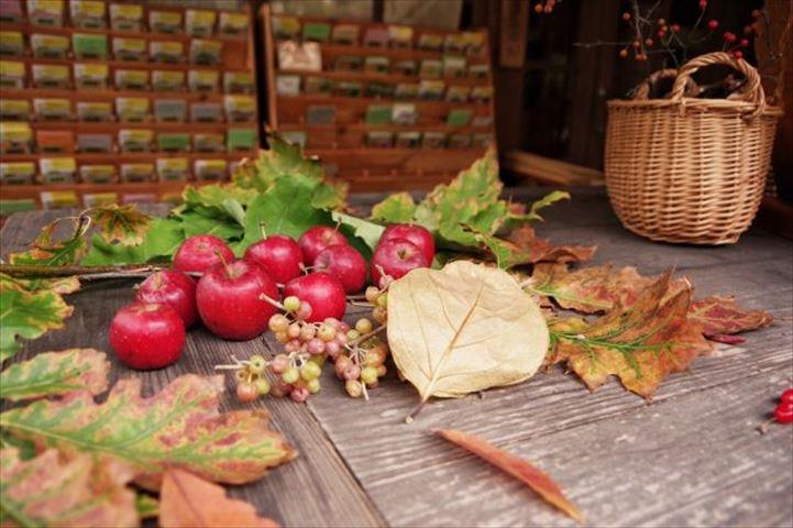 もう一度行きたいあの場所<3>大自然の美しさに息をのむ。長野県諏訪・蓼科