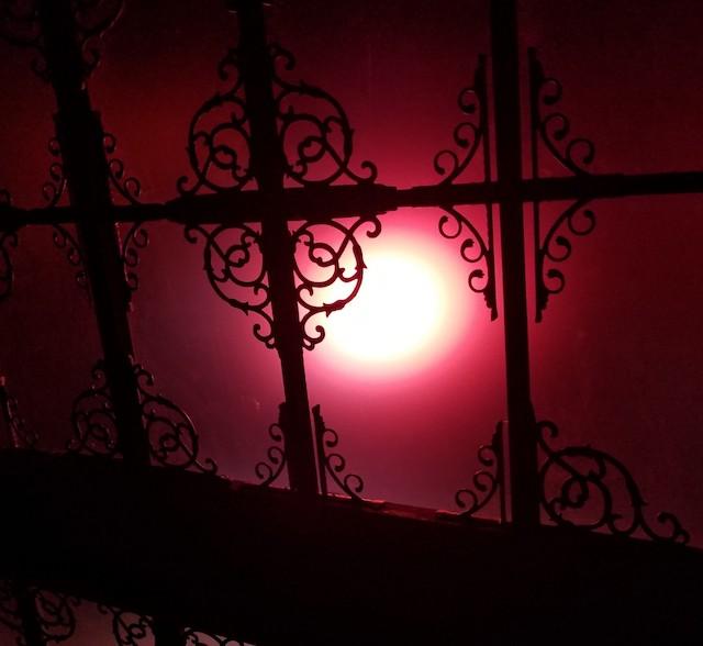 夜の美術館に現れた、12日間限定の美しすぎるお化け屋敷とは?