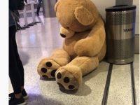 アメリカの空港で没収された、驚きのあんなもの・こんなもの