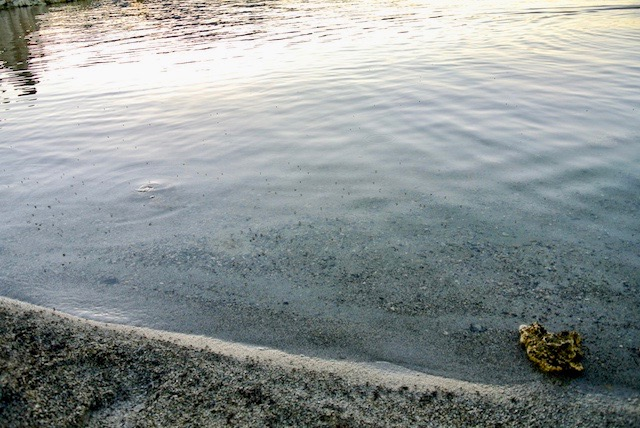 エヴァンゲリオンのワンシーンに登場?世界中からカメラマンが訪れる湖の正体