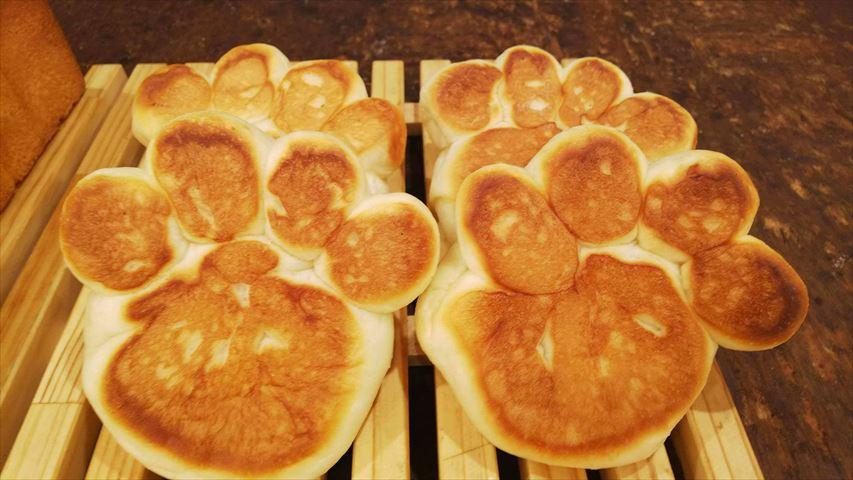 肉汁溢れる、猫の「肉きゅう」パンがインパクト大!パンパティの2店舗がリニューアル