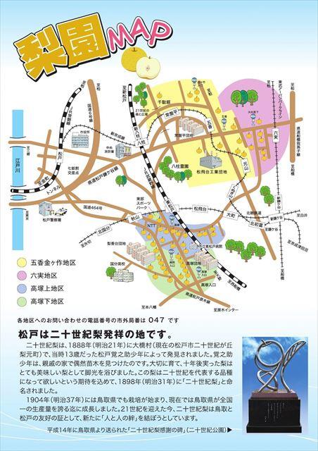 秋のフルーツ「梨狩り」を国内収穫量最多の千葉県松戸市で楽しもう!