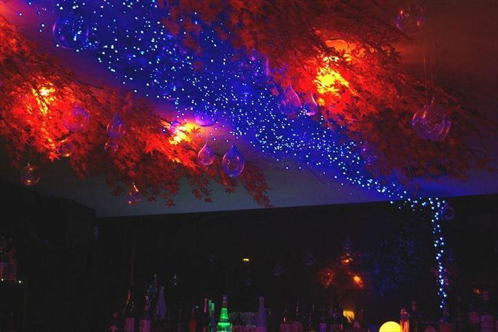 店内で楽しめる、真っ赤な紅葉と天の川!吉祥寺 SUN Tama Barの秋イルミネーション