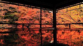 秋に宿泊者が多い都道府県ランキング~日本人と外国人に違いはあるの?