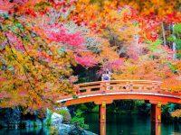 【恋に生きた日本の女性たち2】縁結びの神となった事情 磐長姫(いわながひめ)