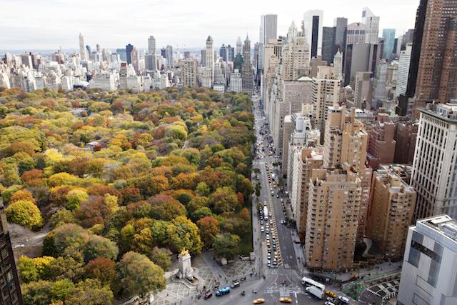秋のセントラルパーク 上空からの眺め