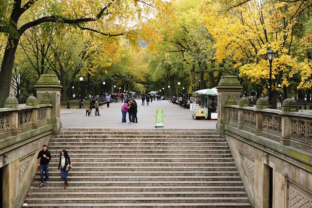 ニューヨーク セントラルパーク ザ・モール ベセスダの泉に向かう階段