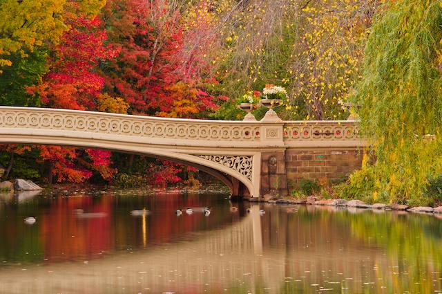 セントラルパークで一番人気のある橋 ボウ・ブリッジ