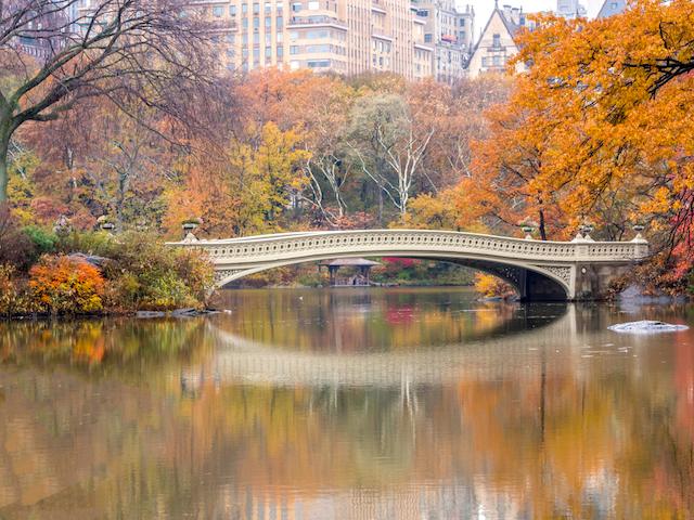 美しい弓形のアーチを描く橋 セントラルパーク ボウ・ブリッジ