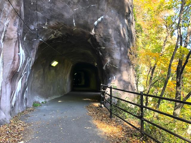 鬼怒川温泉 鬼怒楯岩大吊橋 楯岩トンネル