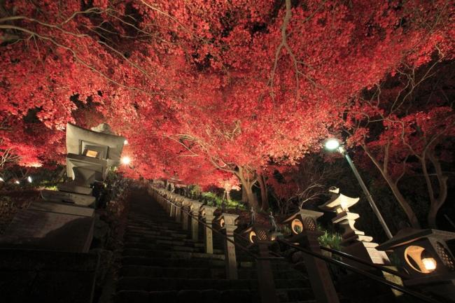 【神奈川】秋の大山詣り2018紅葉の風景