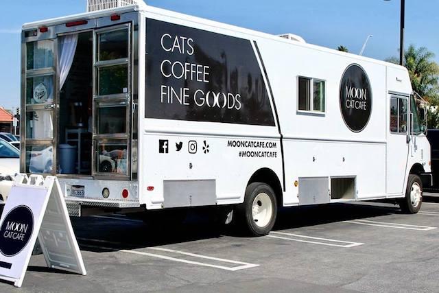 アメリカ ロサンゼルス 猫カフェ Moon Cat Cafe