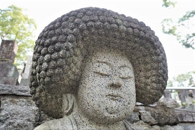 京都「アフロ大仏」アップ 金戒光明寺