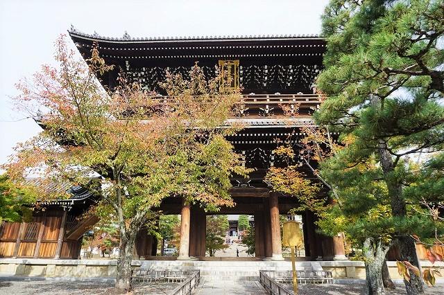 京都「アフロ大仏」金戒光明寺