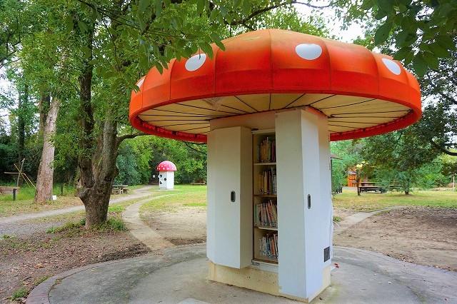 京都府立植物園 フォトスポット「きのこ文庫」