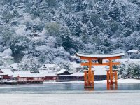 雪化粧した宮島