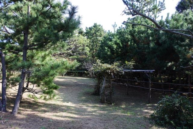 旧大隈邸 邸園