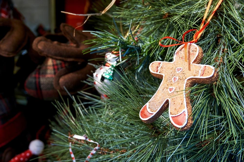 スコットランドのクリスマスツリー