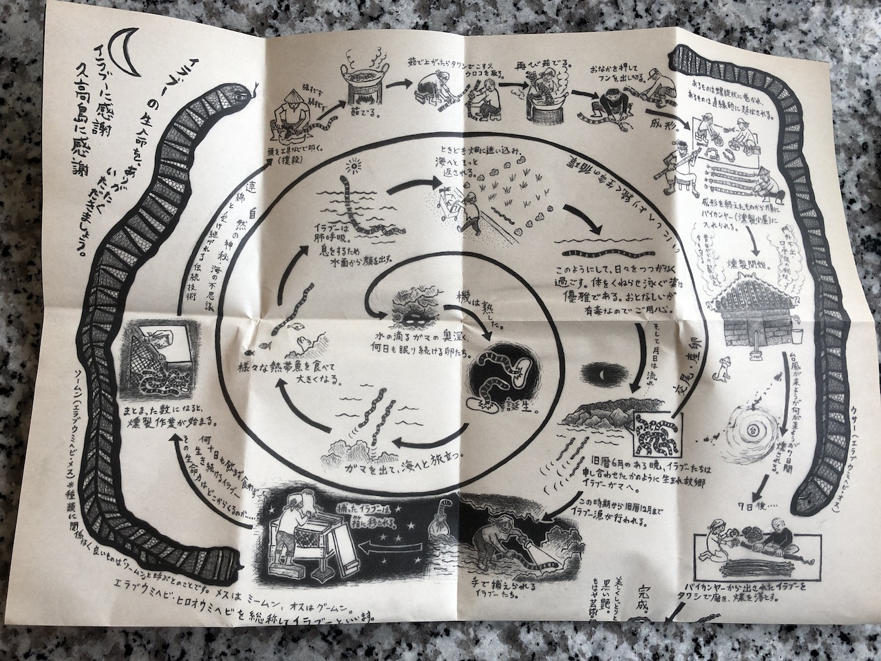 海蛇の粉 説明書1