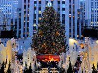 ニューヨーク ロックフェラープラザのクリスマスツリー
