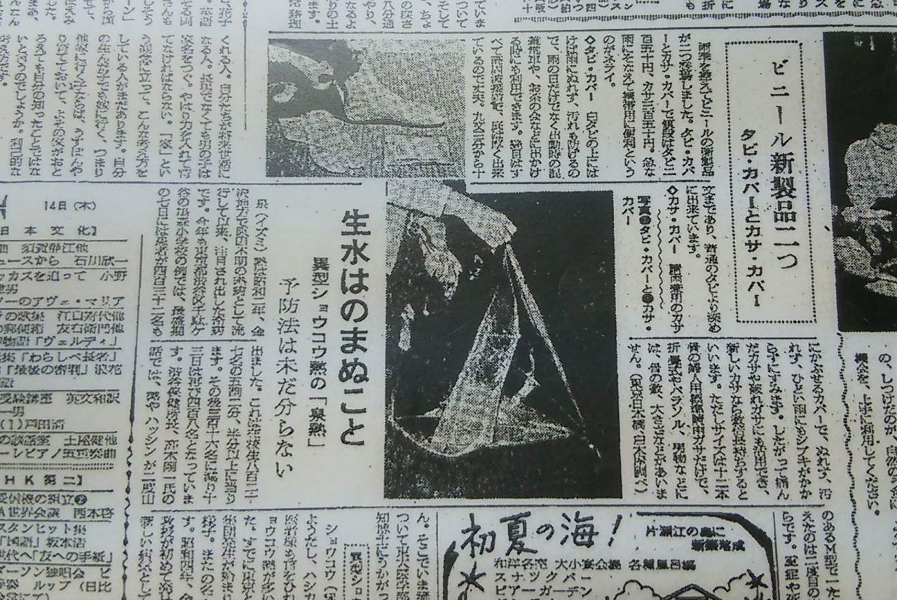 ホワイトローズ 当時の朝日新聞の記事