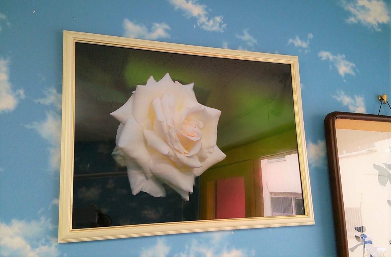 ホワイトローズ ホワイトローズ(店内の写真)