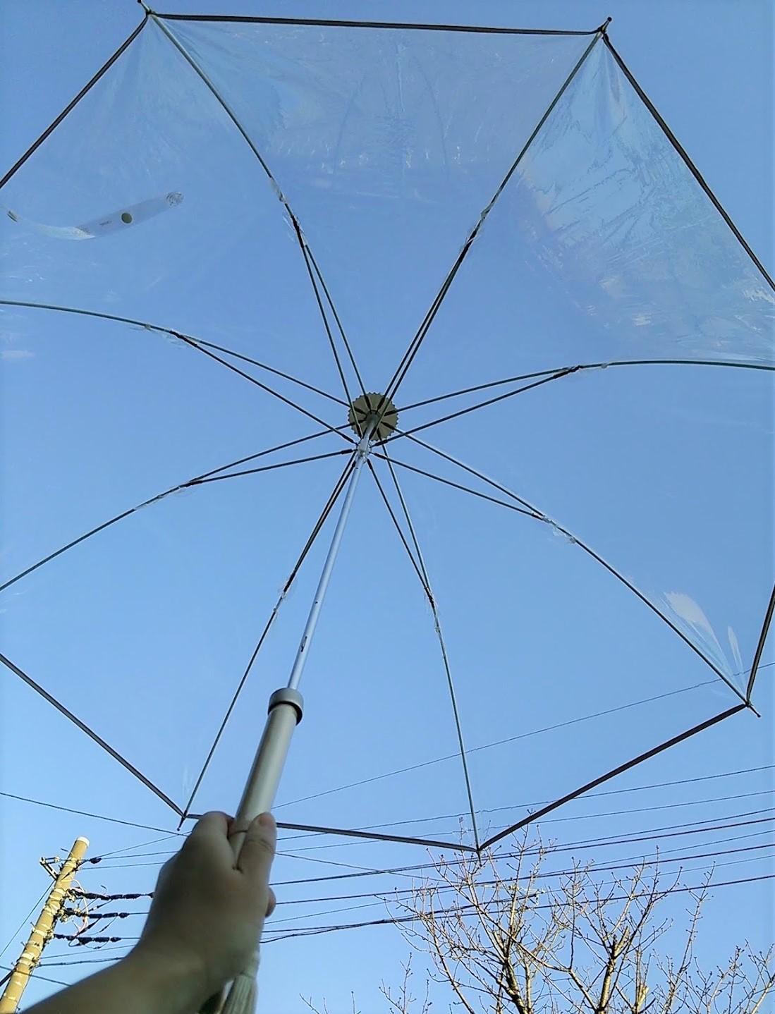 ホワイトローズ 青空とビニール傘