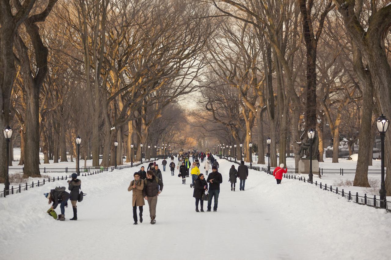 雪のセントラルパーク ザ・モール