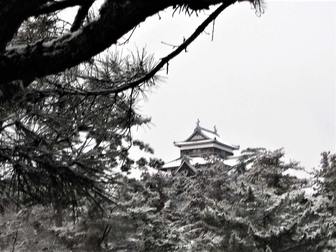 冬の松江城