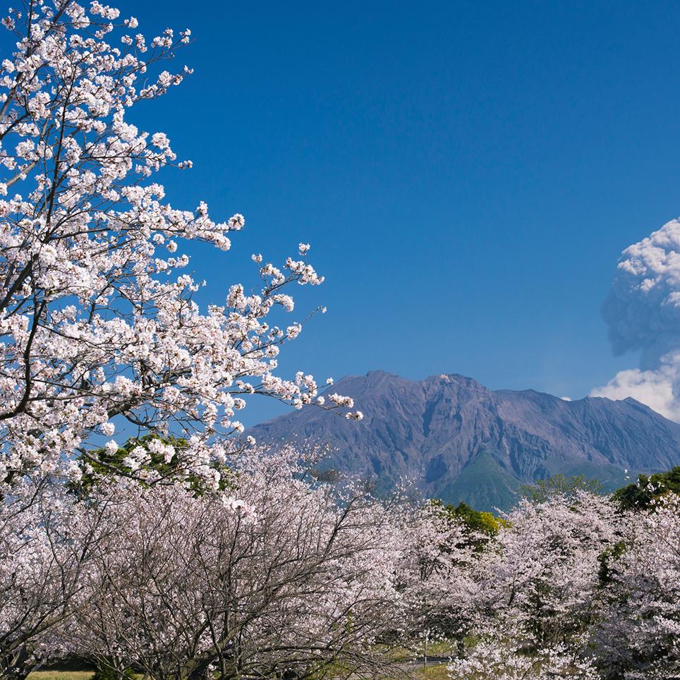 鹿児島県 吉野公園