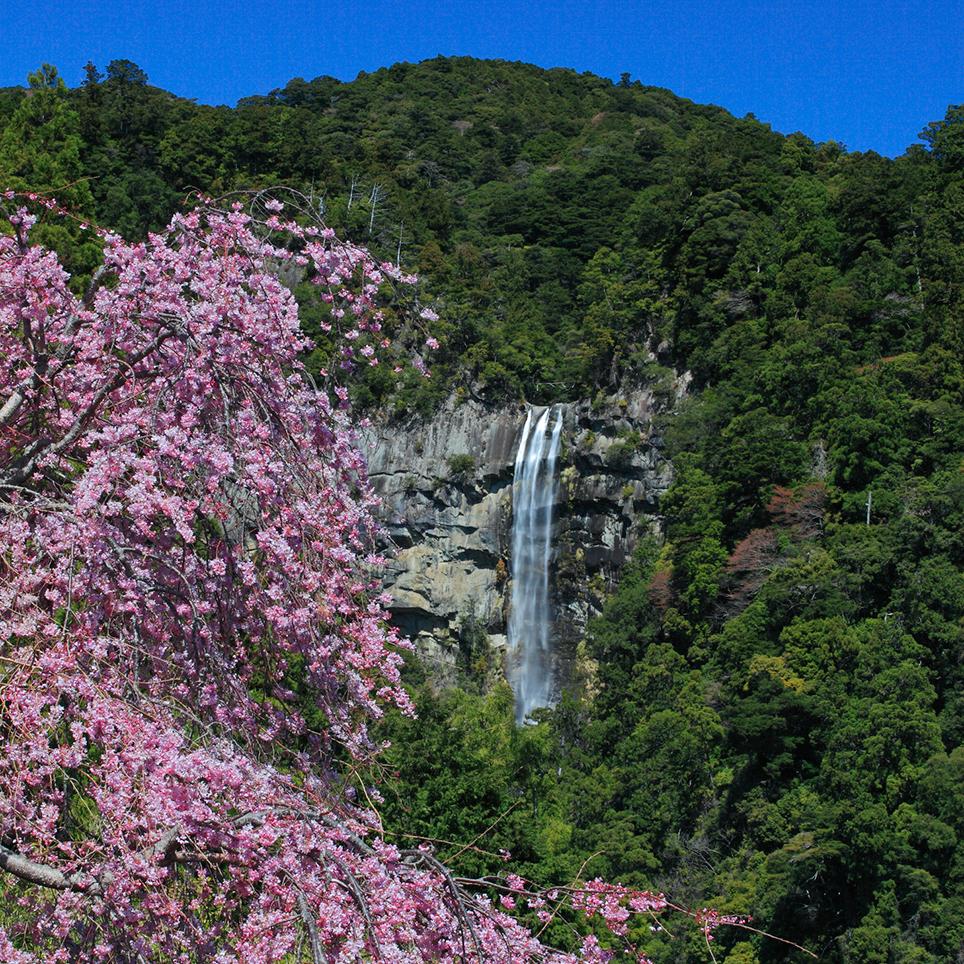 和歌山県 熊野那智大社那智の瀧