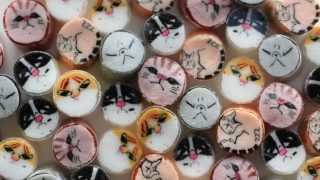 猫ミックスキャンディ パパブブレ