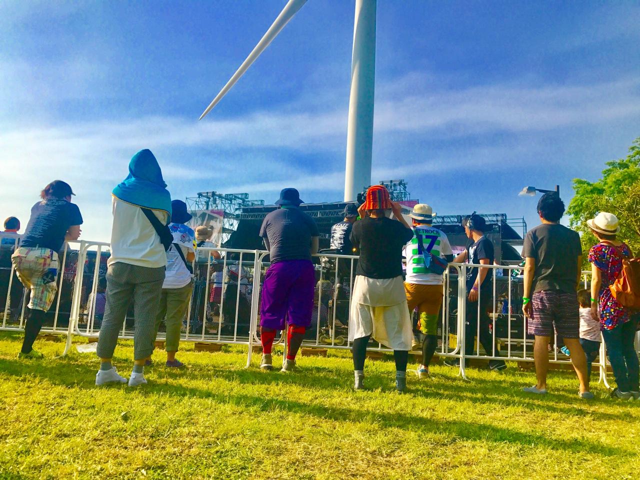 芝生と音楽フェス
