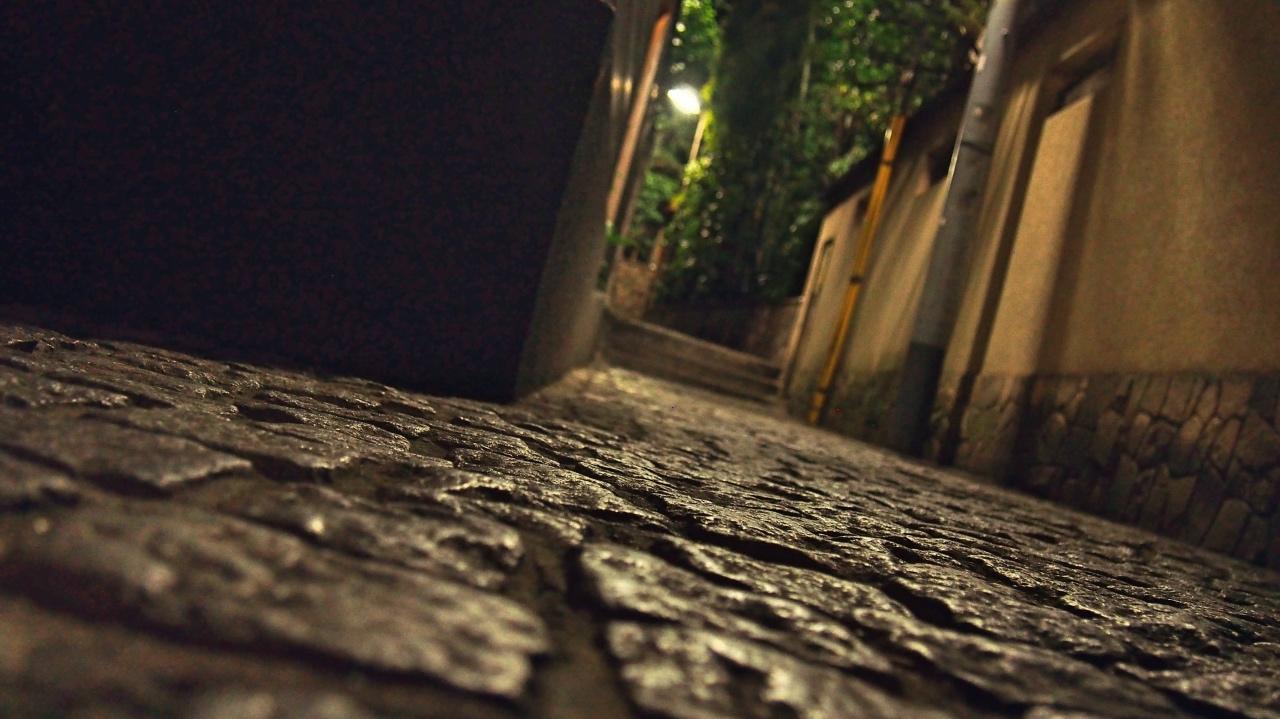 神楽坂 石畳 夜