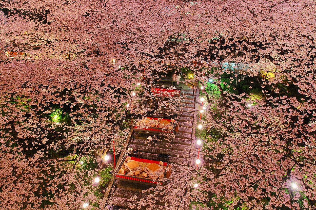 高輪桜まつり2019