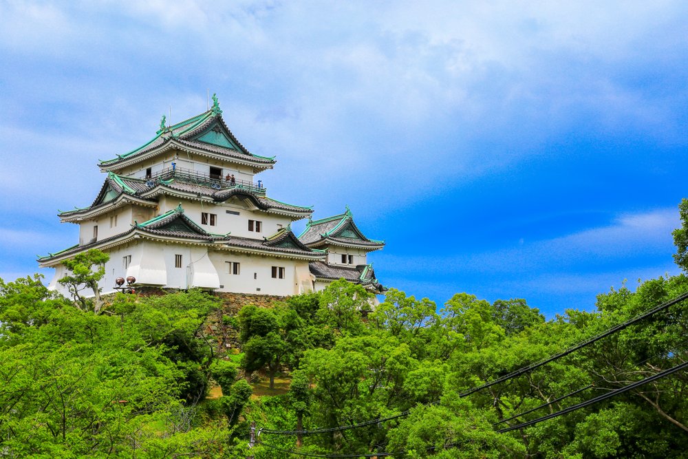 徳川吉宗を生んだ紀州徳川家の居城