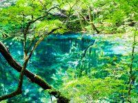 白神山地/青森県中津軽郡