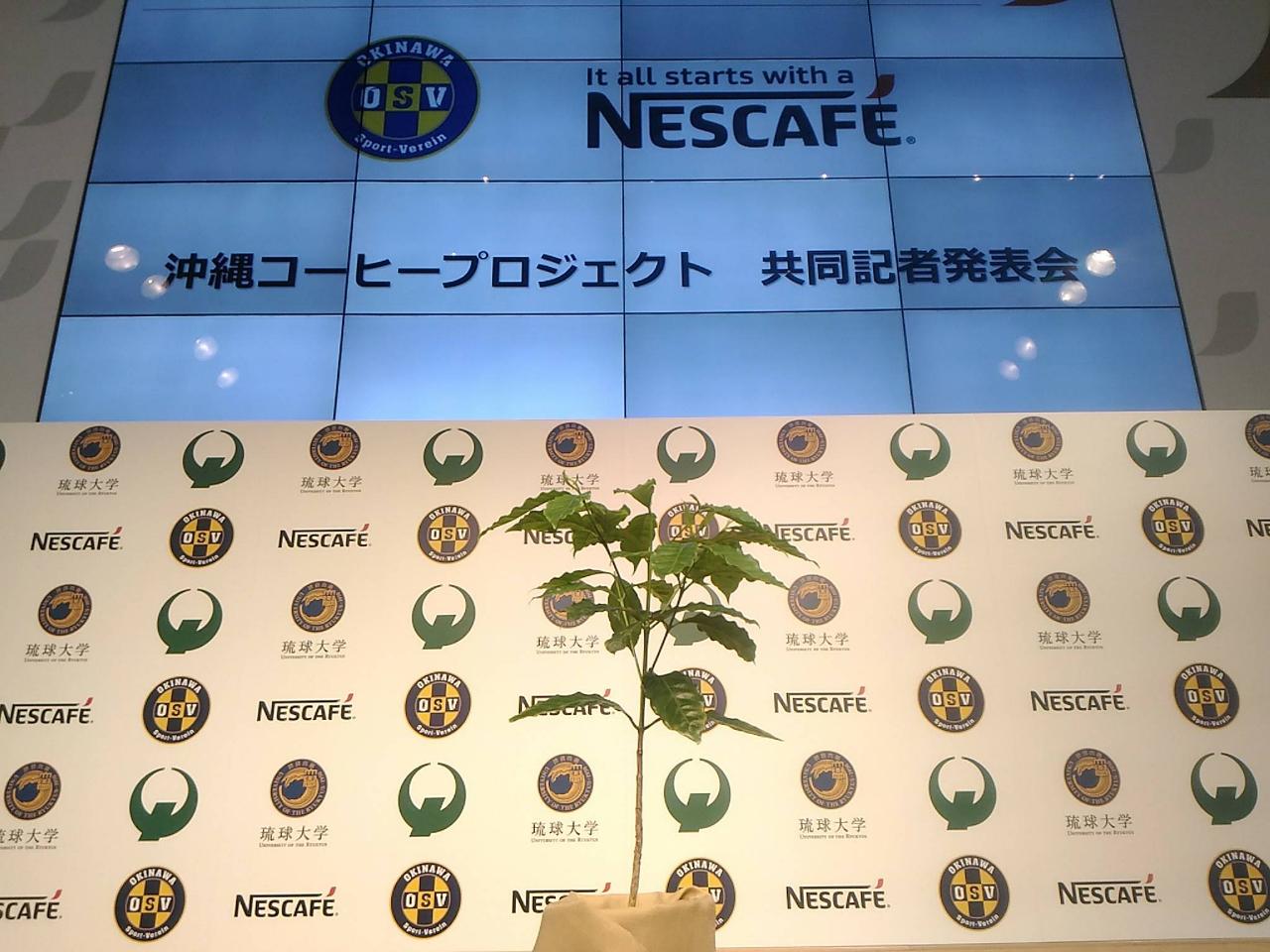 沖縄コーヒープロジェクト発表会