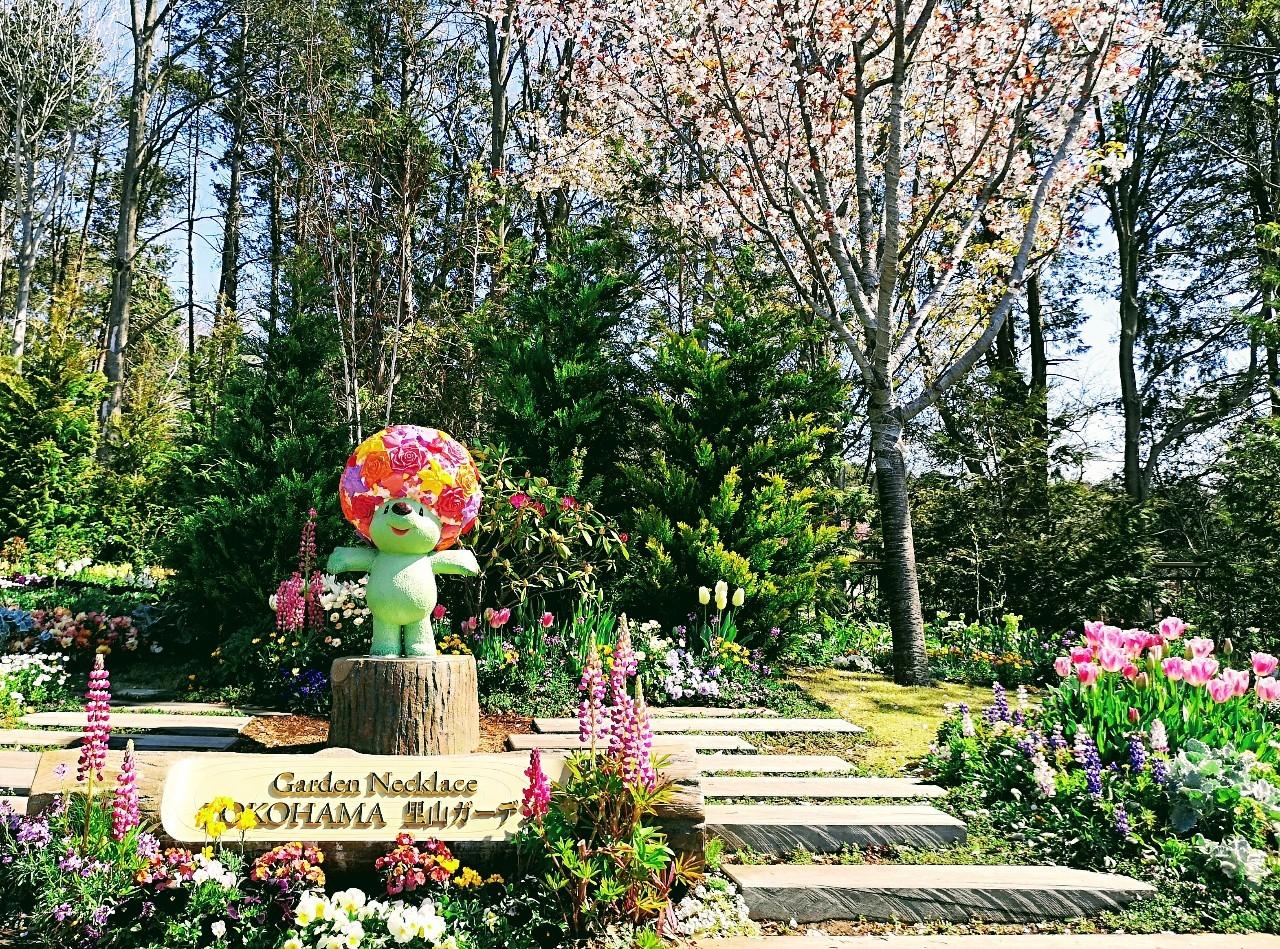 里山ガーデンベア