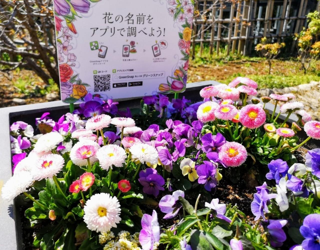 里山ガーデンアプリ