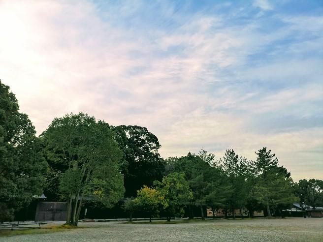 橿原神宮朝日と木々